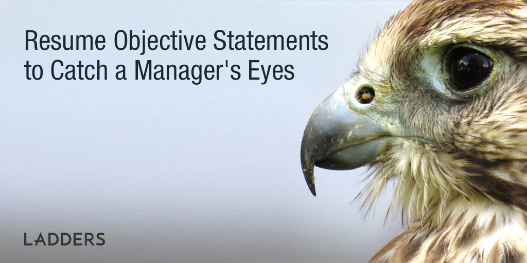 Career \ Resume Objective Statements to Catch Attention Ladders - general resume objectives