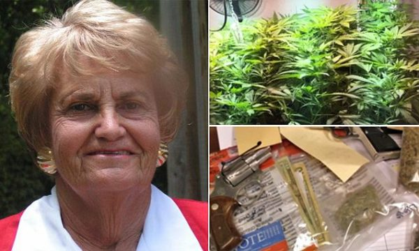 Pot Loving Congressional Candidate, 77 Years-Old, Busted With 180 Plant Grow-op In Her Back Yard
