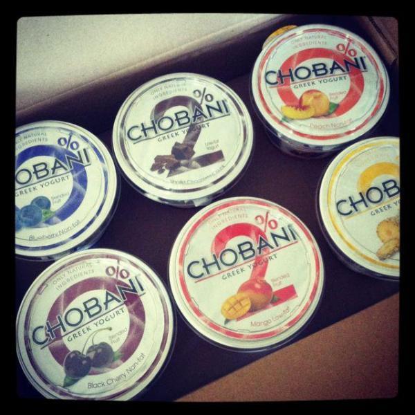IMG 7291 Frozen Greek Yogurt Bars