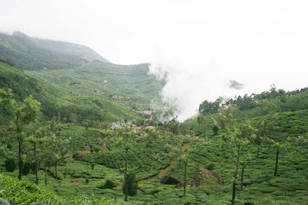 list of the top hill ranges of the Western Ghats