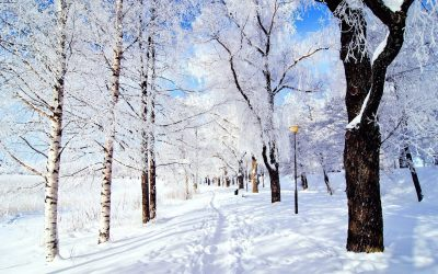 10 Snow Facts to Make You Feel Festive | The List Love