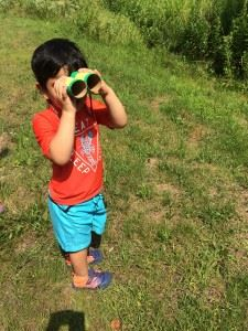 Searching for the perfect addition to his nature walk collection.