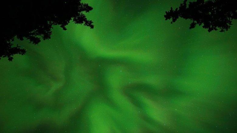 auroraborealisgreyowlstrek