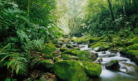 Costa Rica, viaje a la cultura sostenible