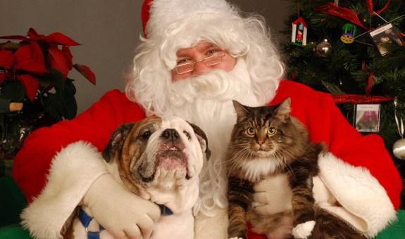 Tu mascota también quiere un regalo...
