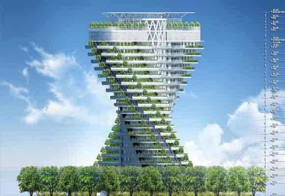 La estructura está rodeada de árboles
