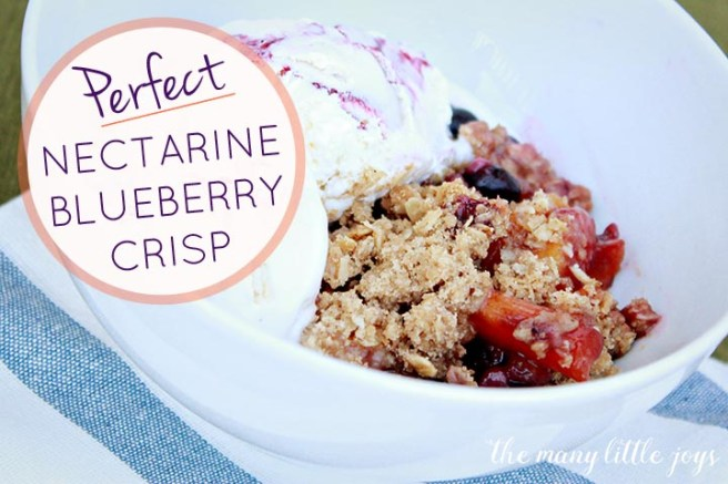 This nectarine blueberry crisp is the perfect summertime fruit dessert. Sweet with a little tart, gooey with a little crunch...it's simply delicious!