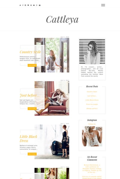 Pro WordPress Themes - Website Templates by Theme Bullet