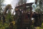 Xochimilco's Island of the Dolls, or isla de las muñecas