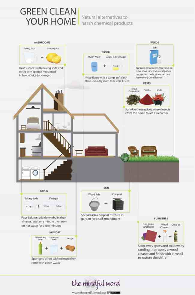 Green clean your home - infographic