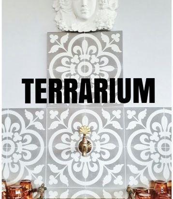 Coffee Terrarium Title