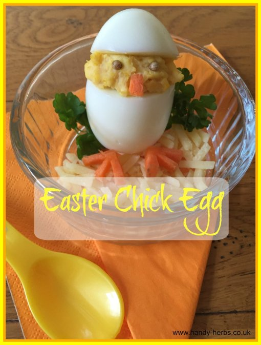 Easter Chick Eggs by Handy Herbs