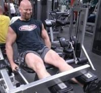 Big Quads Leg Extensions