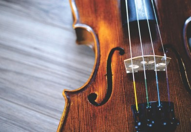 It's National Violin Day!