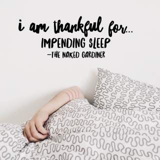 thankful-thursdays-impending-sleep-the-naked-gardiner-kathy-gardiner