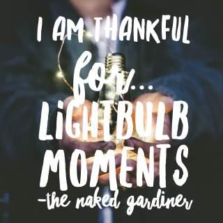 thankful-thursdays-lightbulb-moments-the-naked-gardiner-kathy-gardiner