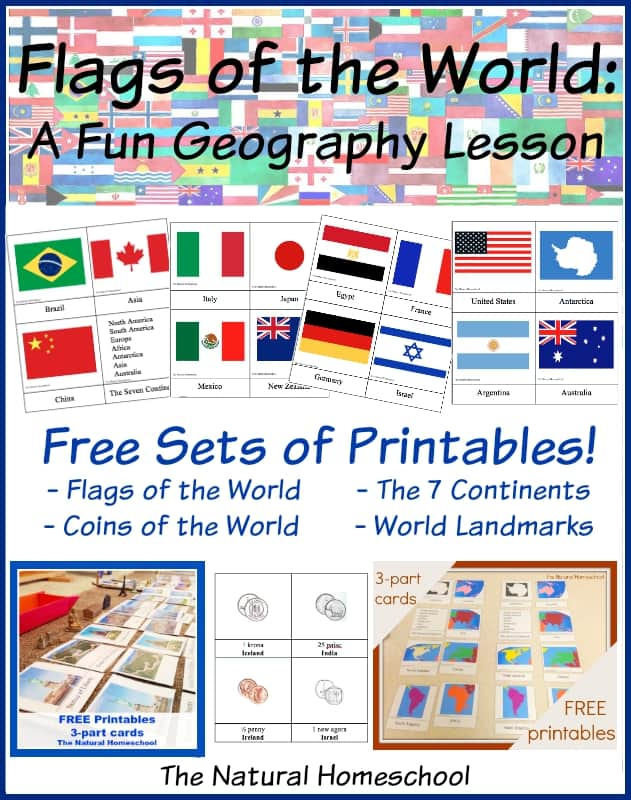 Fantastic Country Flags of the World with 4 Free Printables - The