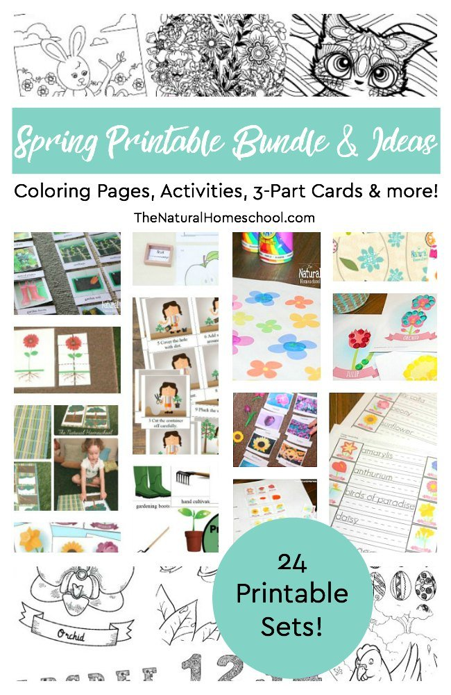 Spring Printable Coloring Pages, Activities, 3-Part Cards and more