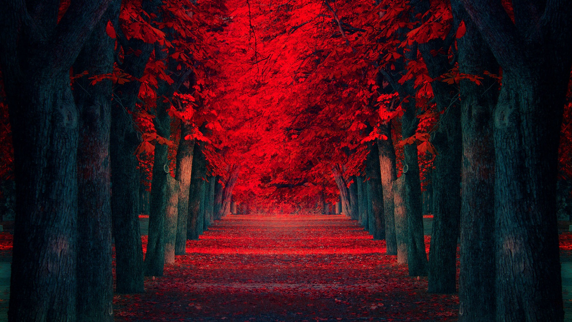 Entry6 11 Beautiful Road Wallpapers Hd The Nology