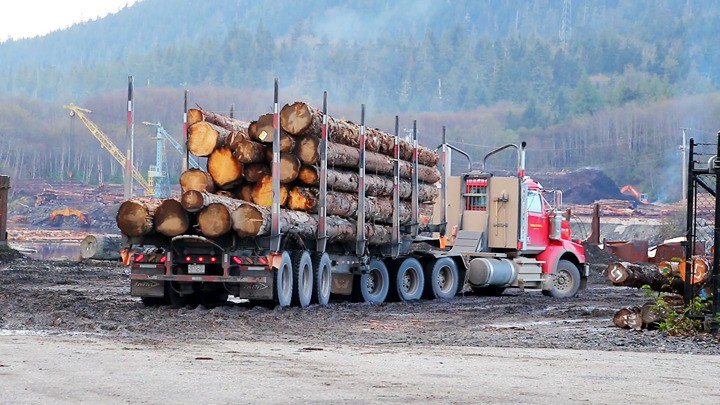 Letter To The Editor Time Letter To The Editor Banning Log Export Bad Business