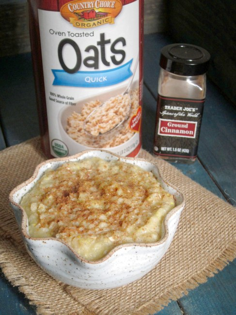 Snickerdoodle Cookie Dough Oatmeal - The Oatmeal Artist