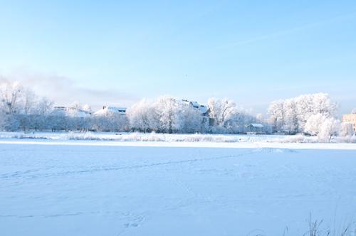 snow_web