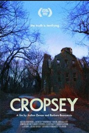 cropsey, staten island, andre rand, willowbrook, seaview, csi