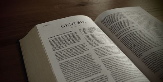 Genesis 1-11 and Work Bible Commentary Theology of Work