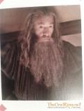 2012-10-19 16.40.48 - Gandalf at Bag End-imp