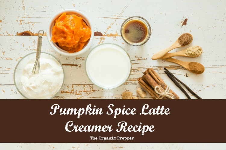 Diy Pumpkin Spice Latte Creamer - The Organic Prepper