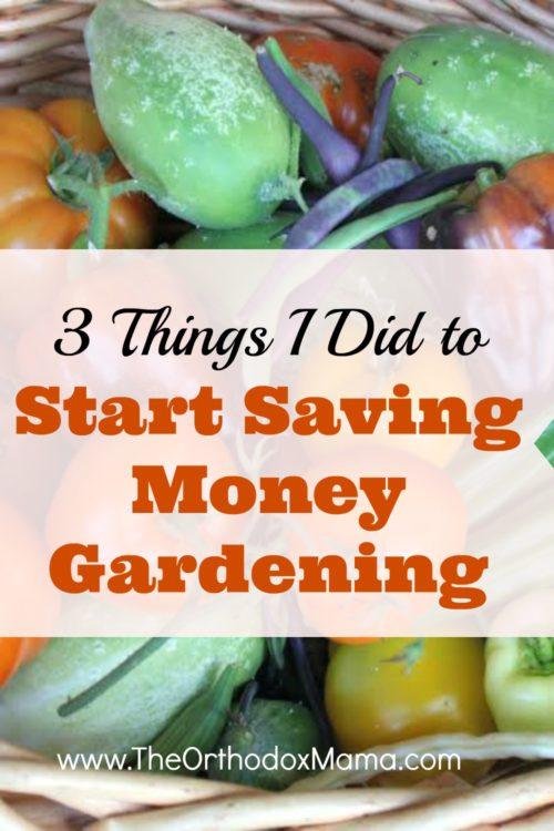 3 Things I Did to Start Saving Money Gardening