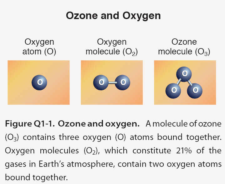 The Ozone Hole - molecule vs atom