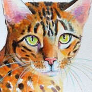A Bengal Cat In Watercolour