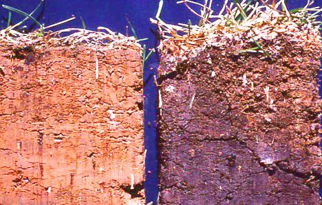 soil comparisons