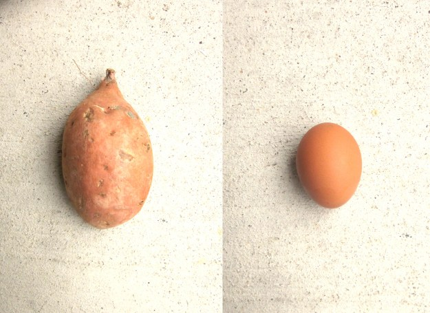 The Sweet Potato and the Egg.
