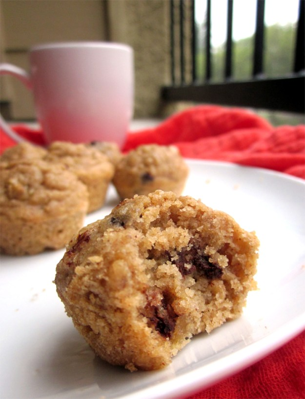 Almond Butter Quinoa Oat Mini Muffins