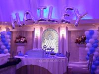 Sweet Sixteens! | The Party Place LI | The Party Specialists
