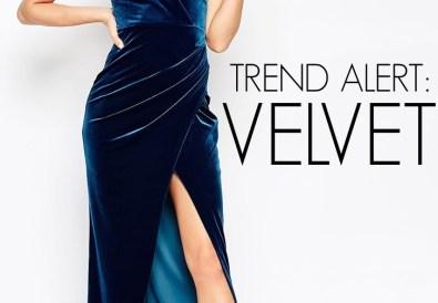 trend alert velvet