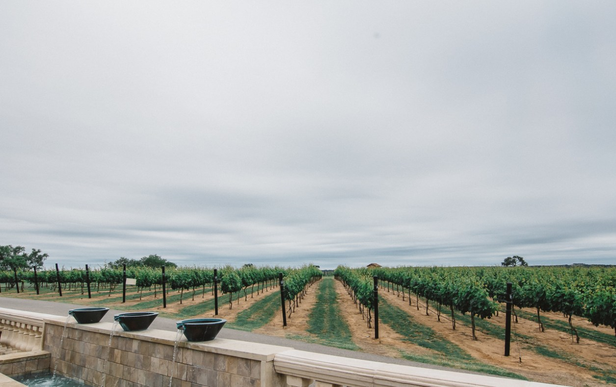 fredericksburg wineries
