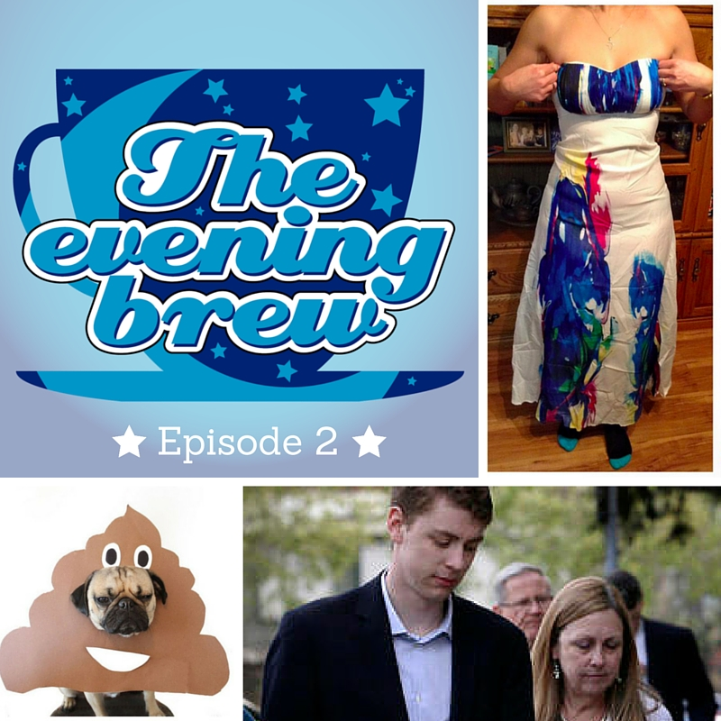 The Evening Brew #2: Dog Poo, Shady Clothing Sites, and Brock Turner