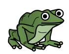 about_frog