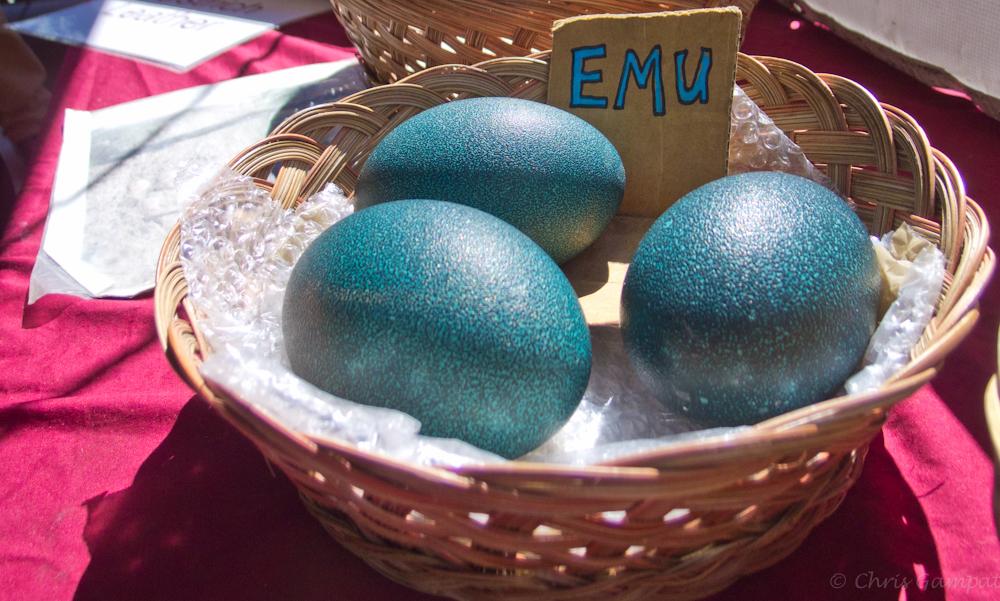 Chris Gampat XZ-1 eggs edited (1 of 2)
