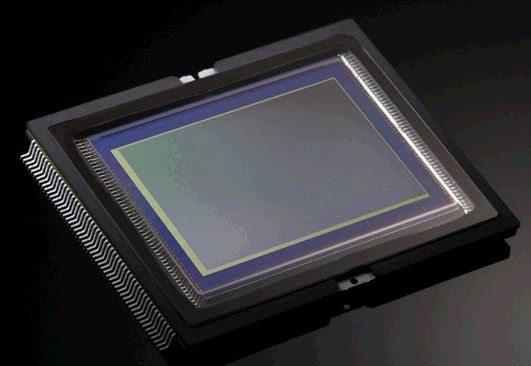 Canon EOS-1DX Sensor