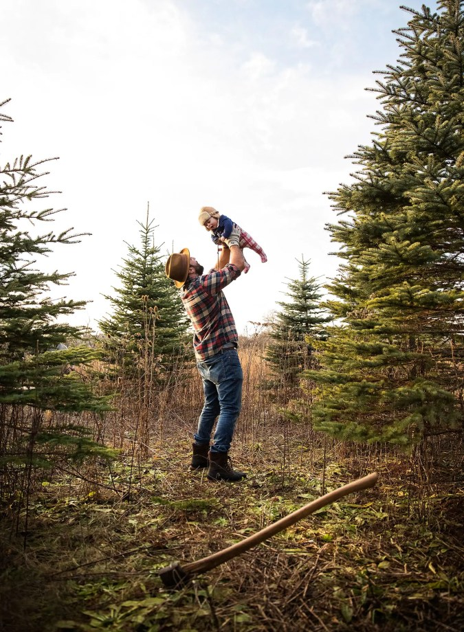 Tree-cutting_0127