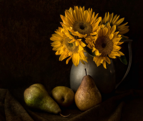 Fall Sunflowers Wallpaper 35 Superb Examples Of Still Life Photography