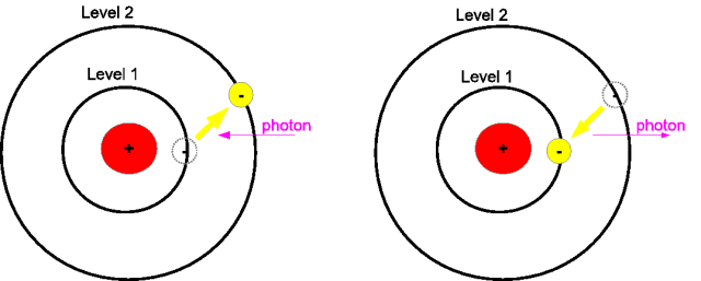 Bohr Model Emission and Absorption