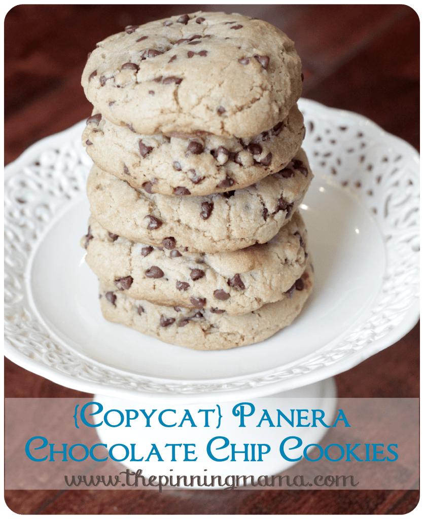 {Copycat} Panera Chewy Chocolate Chip Cookies by www.thepinningmama.com