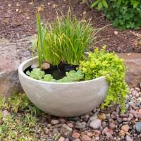 The Pond Outlet Blog
