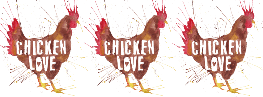 Chicken Love Facebook Cover Photo | The Postman's Knock