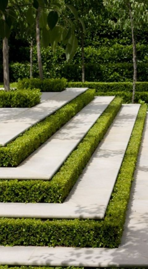 Boxwood Steps